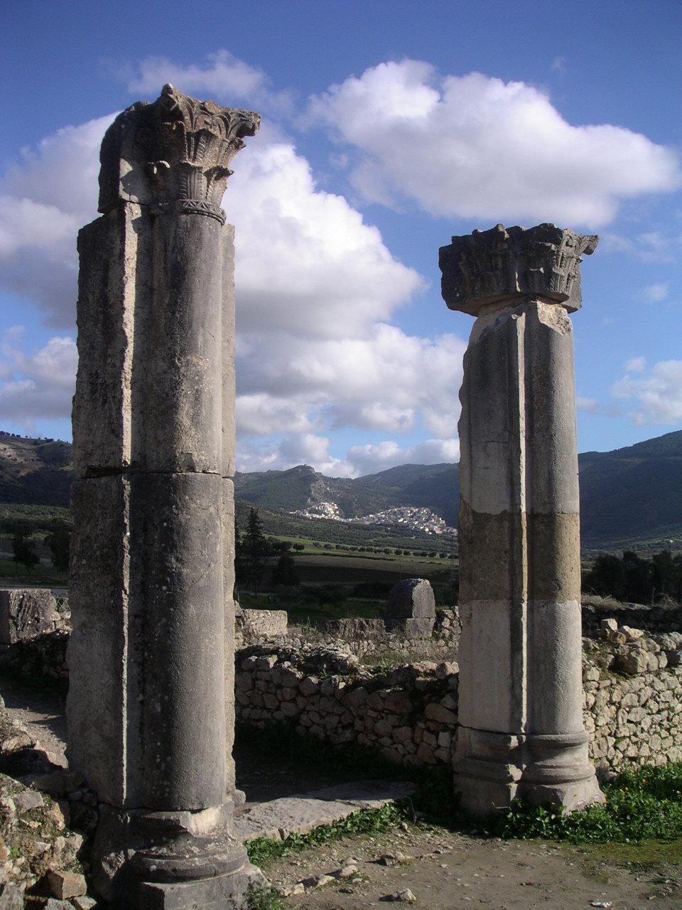 Vous visionnez les images de l'article : Villa de Volubilis