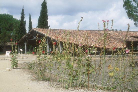 Vous visionnez les images de l'article : Villa de Séviac